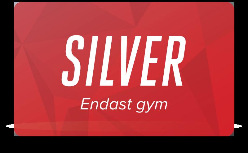 Silver - Endast gym